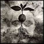Conceptual image of a woman face dreaming of growth.