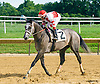 Southern Girl winning at Delaware Park on 8/15/16