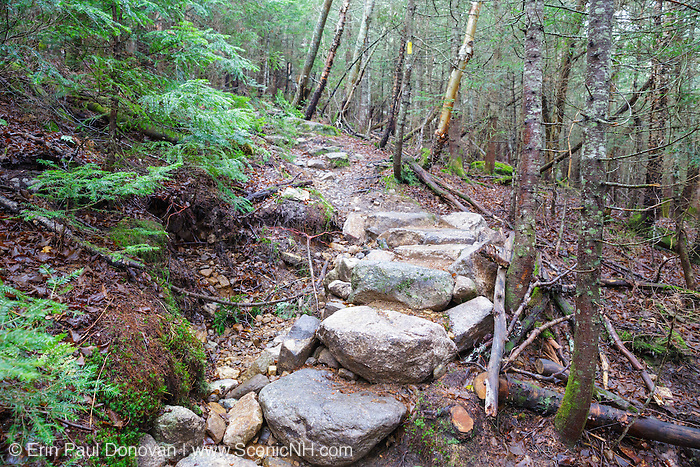 October 2014 - Fairly new stone steps along the Mt Tecumseh Trail in Waterville Valley, New Hampshire. The large hole on the left was created when the steps were built. Water that runs down the trail and hillside can now build up in this hole and undermine the stone steps, which will cause more erosion damage to this section of trail. This is not minimal impact trail work.