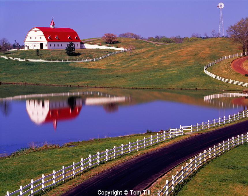 Barn Reflected in Farm Pond, Jefferson County, Alabama