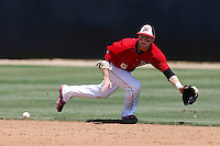 Kyle Attl #6 of the Cal State Northridge Matadors dives for a ground ball during a game against the UC Santa Barbara Gauchos at Matador Field on May 12, 2013 in Northridge, California. Cal State Northridge defeated UC Santa Barbara 7-1. (Larry Goren/Four Seam Images)