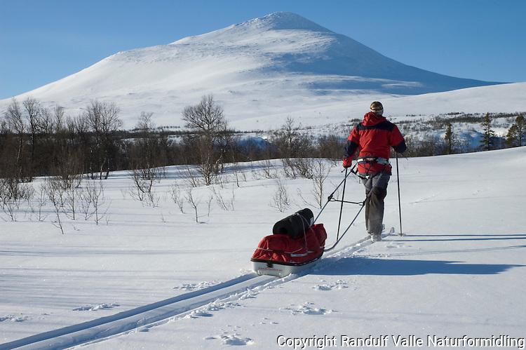 Jente trekker pulk en flott vinterdag ---- Girl pulling sled a beautiful winter day