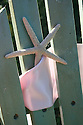 Starfish tied to green adirondack chair with pink ribbon