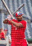 15 August 2017: Washington Nationals outfielder Howie Kendrick takes batting practice prior to a game against the Los Angeles Angels at Nationals Park in Washington, DC. The Nationals defeated the Angels 3-1 in the first game of their 2-game series. Mandatory Credit: Ed Wolfstein Photo *** RAW (NEF) Image File Available ***