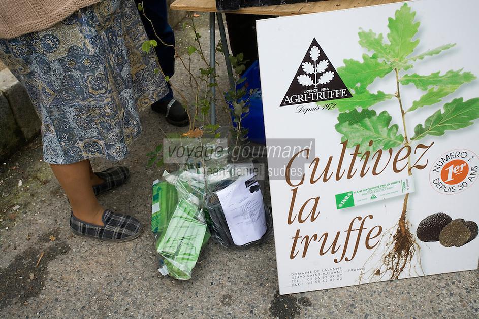 Europe/France/Midi-Pyrénées/46/Lot/Lalbenque: lors du marché aux truffes