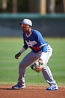 Los Angeles Dodgers Jefrey Souffront (74) during an instructional league game against the Milwaukee Brewers on October 13, 2015 at Cameblack Ranch in Glendale, Arizona.  (Mike Janes/Four Seam Images)