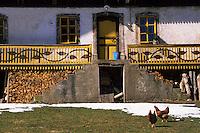 Europe/France/Rhône-Alpes/74/Haute-Savoie/ENV Abondance: Les Folys - Détail chalets
