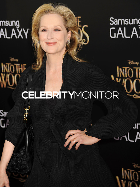 NEW YORK CITY, NY, USA - DECEMBER 08: Meryl Streep arrives at the World Premiere Of Walt Disney Pictures' 'Into The Woods' held at the Ziegfeld Theatre on December 8, 2014 in New York City, New York, United States. (Photo by Celebrity Monitor)