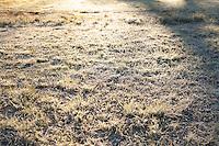 CACHOEIRA DO SUL, RS, 13.06.2016 - CLIMA-RS - Baixa temperatura atinge a cidade de Cachoeira do Sul no Rio Grande do Sul nesta segunda-feira, 13. (Foto: Robson Alves/Brazil Photo Press)