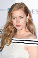 Amy Adams at the 2017 BAFTA Film Awards Nominees party held at Kensington Palace, London, UK. <br /> 11 February  2017<br /> Picture: Steve Vas/Featureflash/SilverHub 0208 004 5359 sales@silverhubmedia.com