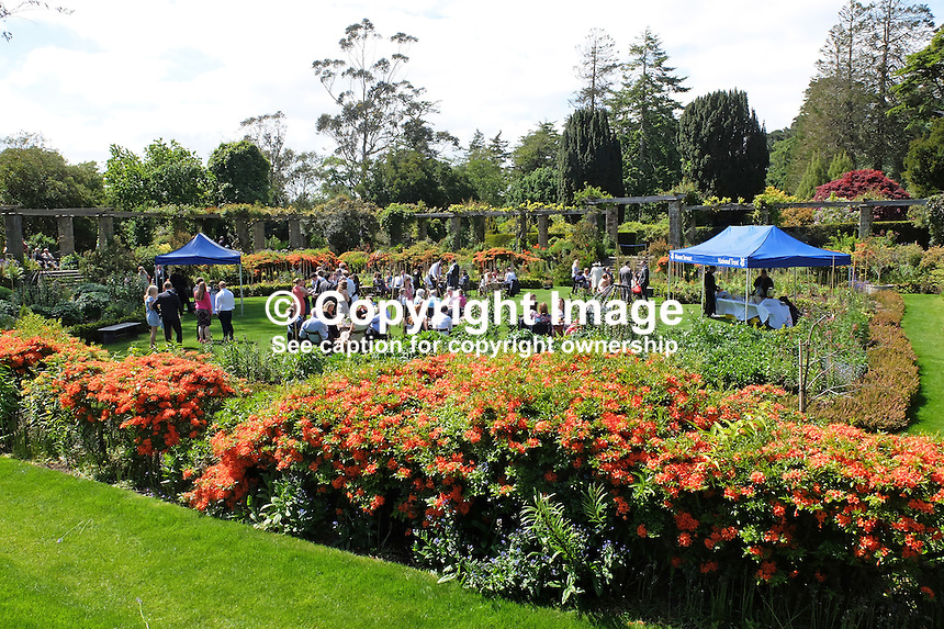 Wedding reception venue, Mount Stewart, National Trust property near Newtownards, Co Down, N Ireland. 13th June 2015, 201506131112<br />