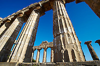 Greek Dorik columns at the  ruins of Temple F at Selinunte, Sicily photography, pictures, photos, images & fotos.