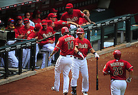 Apr. 8, 2012; Phoenix, AZ, USA; Arizona Diamondbacks third baseman (14) Ryan Roberts celebrates with Gerardo Parra after hitting a two run home run in the sixth inning against the San Francisco Giants at Chase Field. Mandatory Credit: Mark J. Rebilas-