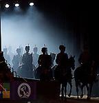 Horse of the Year Show (HOYS) 2013 - NEC - Birmingham