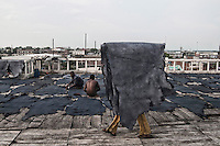 A labour carrying leather on his head at a tannery in Jajmau area, Kanpur. Exposure to the harmful chemicals used in the tannery causes skin diseases, respiratory diseases, gastro-intestinal ailments etc. Researches have shown presence of elevated amount of chromium in the blood and urine of the workers. Kanpur, Uttar Pradesh, India. Arindam Mukherjee