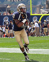 Pittsburgh running back Jason Douglas.The Pittsburgh Panthers defeated the Youngstown State Penguins 38-3 at Heinz Field on September 5, 2009.