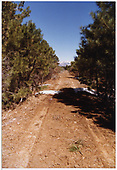 Abandoned RGS right-of-way north of Mule Shoe Curve.<br /> RGS  3 miles n. of Mule Shoe Curve, CO  Taken by Dorman, Richard L.