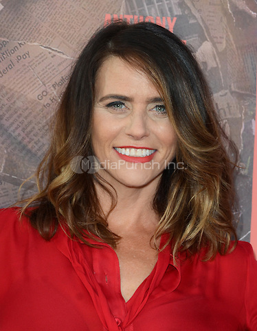 HOLLYWOOD, CA - MAY 10: Amy Landecker at the 'All The Way' Los Angeles Premiere at Paramount Studios on May 10, 2016 in Hollywood, California. Credit David Edwards/MediaPunch
