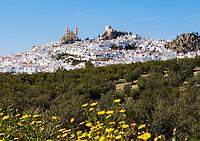 ESP, Spanien, Andalusien, Provinz Cádiz, Olvera: weisses Dorf | ESP, Spain, Andalusia, Province Cádiz, Olvera: pueblo blanco
