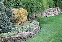 Low retaining rock stone masonry wall separating lawn and garden of succulents and grasses in California design by Nancy Driscoll