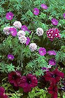 HS47-009c  Flower Garden