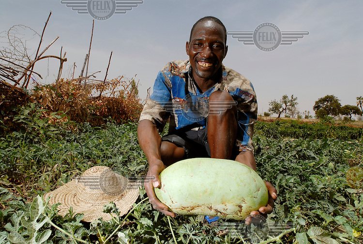 Local farmers Ousman Abdou holds a nearly ripe melon that he has grown from seed on an IFAD-supported agricultural irrigation project. The International Fund for Agricultural Development (IFAD), a specialised UN agency established to finance agricultural projects in developing countries, runs several programmes that work to combine environmental protection with agricultural productivity in the sub-Saharan Sahel region.