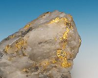"Gold crystals in quartz. Gold-bearing quartz vein, Mother Lode area, Sierra Nevada Mountains, central California, near Mariposa, CA, USA. The California Mother Lode is a zone a few miles wide and 120 miles long discovered in the mid-19th century, center to the ""California Gold Rush""."