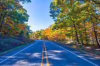 The Colorful Fall Road - Driving through the national forest in the Ozarks continually amazes us with these wonderful pops of color around every curve this fall.  Driving through the national forest you have these tall evergreen pines that line the winding roads and mixed in or these colorful maples, sweet gum, black hickory and many other to make a festival of colors along the side of the road.  Our trip this autumn season was all about fall colors and this years crops did not disappoint. It went on for miles like this in the back roads of the Ozarks.  As you drive through the national forest the tree are thick along the side of the roads you can imagine all kind of thing that could exist in this thick wilderness but today it full of colorful scenery like I have only seen in magazines. I had read that Arkansas was one of the better places to go for fall scenery and at least for this year crop it was stunning fall scenery.