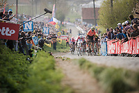 Greg VAN AVERMAET (BEL/CCC) in the final ascent up the Paterberg<br /> <br /> 103rd Ronde van Vlaanderen 2019<br /> One day race from Antwerp to Oudenaarde (BEL/270km)<br /> <br /> ©kramon