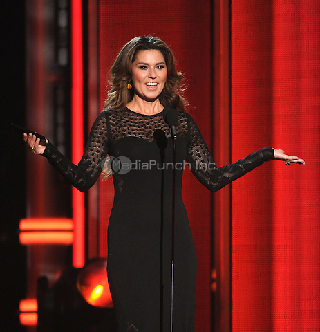 LAS VEGAS, NV - MAY 18: Shania Twain appears on the 2014 Billboard Music Awards at the MGM Grand Garden Arena on Sunday, May 18, 2014 in Las Vegas, Nevada. PgMicelotta/MediaPunch