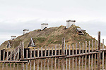 L'Anse aux Meadows Viking archaeological site