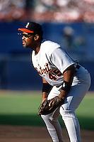 Cecil Fielder of the Detroit Tigers at Anaheim Stadium in Anaheim,California during the 1996 season. (Larry Goren/Four Seam Images)