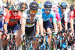 World Champion Peter Sagan (SVK) Bora-Hansgrohe amongst the peloton during Stage 5 of the La Vuelta 2018, running 188.7km from Granada to Roquetas del Mar, Andalucia, Spain. 29th August 2018.<br /> Picture: Unipublic/Photogomezsport | Cyclefile<br /> <br /> <br /> All photos usage must carry mandatory copyright credit (&copy; Cyclefile | Unipublic/Photogomezsport)