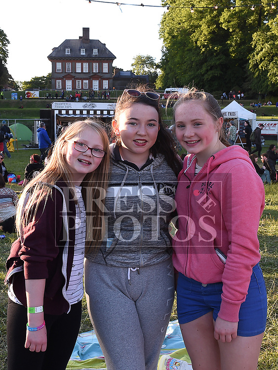 Lily and Eyna Markey and Sophie Bosley from Clogherhead at the Vantastival Festival at Beaulieu House.  Photo:Colin Bell/pressphotos.ie