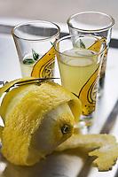 Europe/France/06/Alpes-Maritimes/Menton: Liqueur de Menton  sorte de limoncello de Lionel Deremarque, liquoriste - Les Apéritifs du Soleil