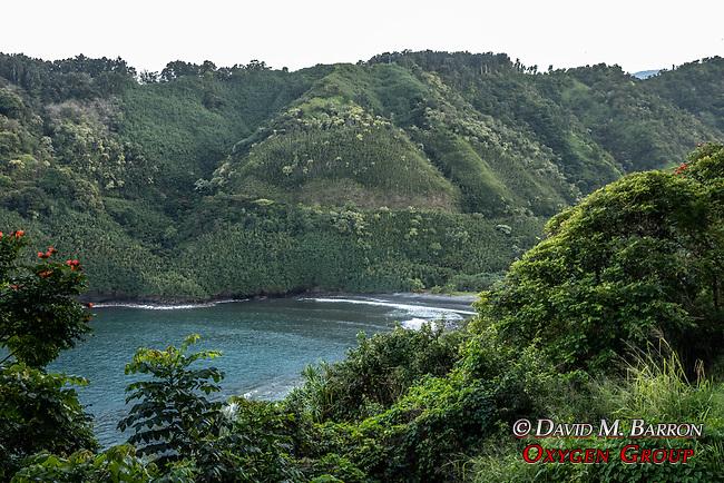View Of Honomanu Beach