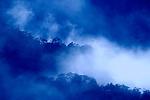 Spring Mountain fog above Napa Valley