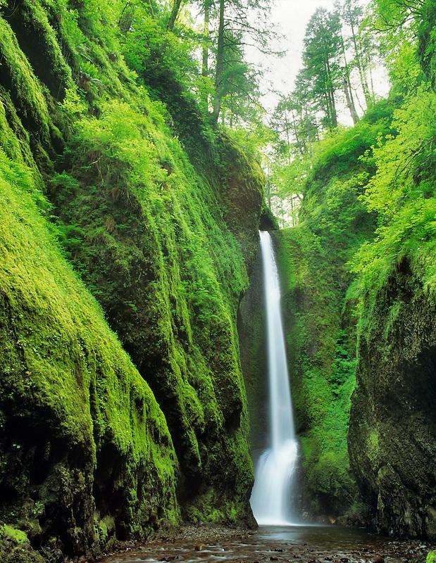 Oneonta Falls Columbia river gorge National Scenic Area, Oregon.