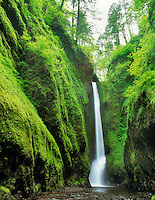 Oneonta Falls Columbia river gorge National Scenic Area, Oregon.