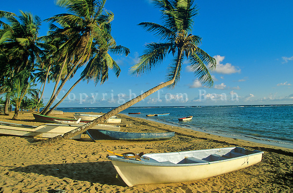 Boats on beach at resort area of Las Terrenas on the Samana Peninsula of the Dominican Republic, AGPix_0144.