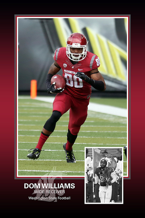 Memorabilia print for Dom Williams from the 2015 Washington State football season in which the Cougs went 9-4, including a Sun Bowl victory over the Miami Hurricanes.
