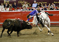Corridas de Toros  11-01-2013 / Bullfights 11-01-2013