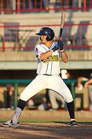 Burlington Bees Livan Soto (7) at bat during a Midwest League game against the Clinton LumberKings on August 28, 2019 at Community Field in Burlington, Iowa.  Clinton defeated Burlington 5-0.  (Travis Berg/Four Seam Images)