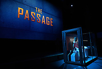 "SANTA MONICA - JANUARY 10: Premiere party for FOX's ""The Passage"" at The Broad Stage on January 10, 2019, in Santa Monica, California. (Photo by Frank Micelotta/Fox/PictureGroup)"