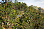 House on hills hidden by trees Ella, Badulla District, Uva Province, Sri Lanka, Asia