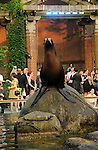 "NEW YORK, NY - JUNE 28:  Sea Lions perform at the 2011 Skin Cancer Foundation's ""A Night The Stars Shine On"" at the Central Park Zoo on June 28, 2011 in New York City.  (Photo by Desiree Navarro/WireImage)"