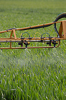 Spraying Winter wheat<br /> &copy;Tim Scrivener Photographer 07850 303986<br /> ....Covering Agriculture In The UK....