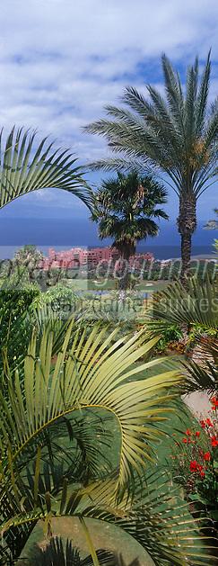 Europe/Espagne/Iles Canaries/Tenerife/Guia de Isora: Hotel Abama vu depuis  son  golf vu depuis  son  golf