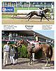 Classy winning at Delaware Park racetrack on 7/2/14