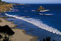 California, Mendocino County, Anchor Bay Beach